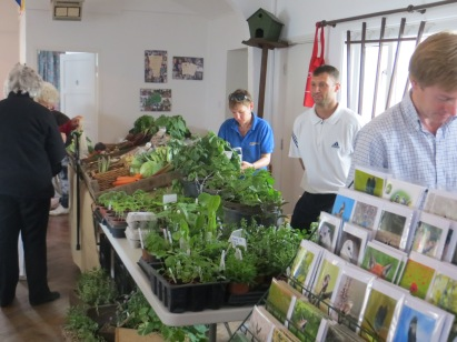 Fresh vegetables and herbs from Bucksum and Springhill