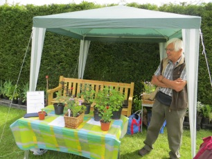 Tony Pearce's delightful plant stall
